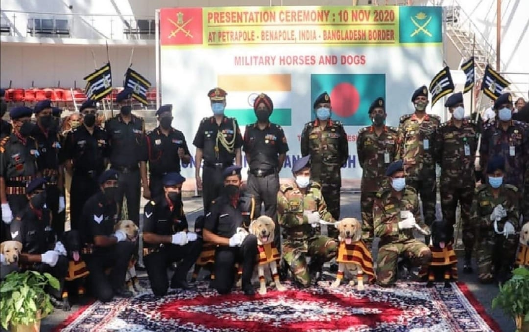 India gifts 20 horses, 10 mine detection dogs to Bangladesh Army