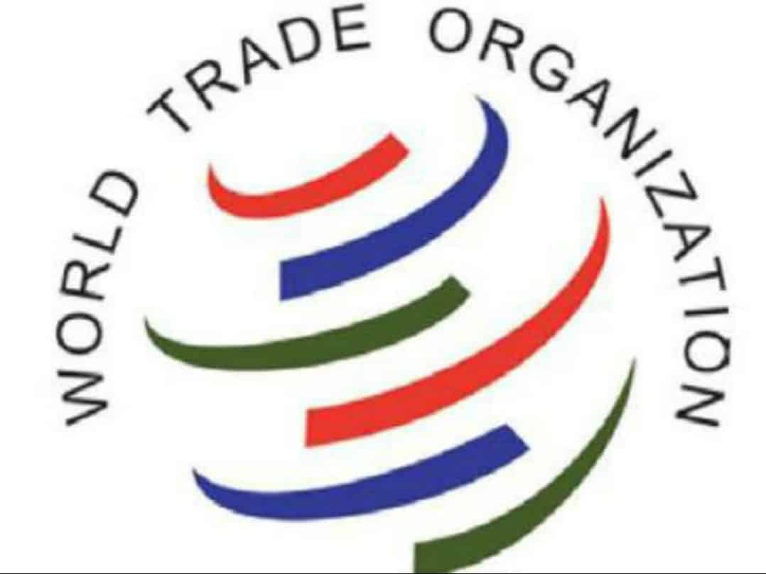 India urges WTO members to consent on TRIPS waiver proposal